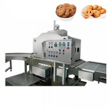 Dsm-Automatic Cookie Biscuit Production Line