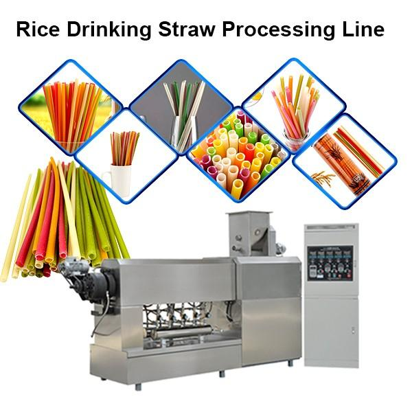 Good price plastic biodegradable straw extruders price for drinking straw machine #1 image