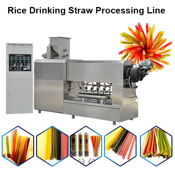 Natural Vegetable Edible Biodegradable Pasta Grain Rice Tapioca Drinking Straw Making Equipment Plant #1 image