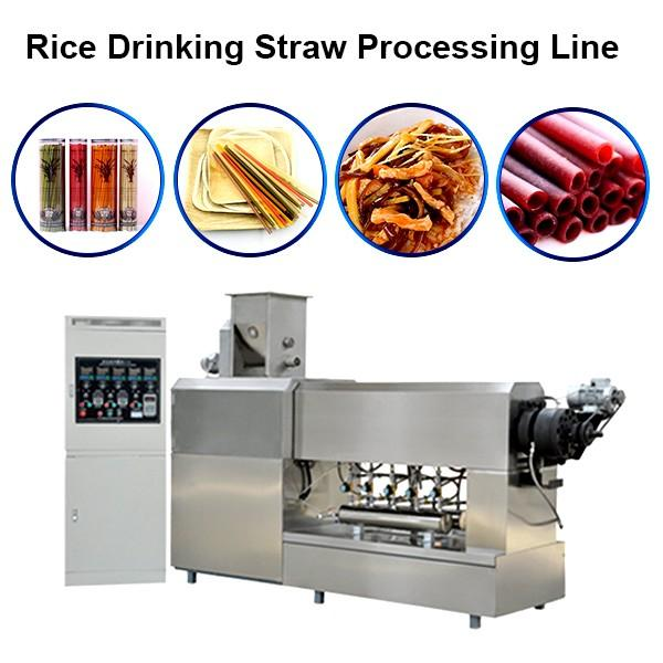 Jinan Sunward 100-150kg/H Edible Rice Making Drinking Straw Machine #1 image
