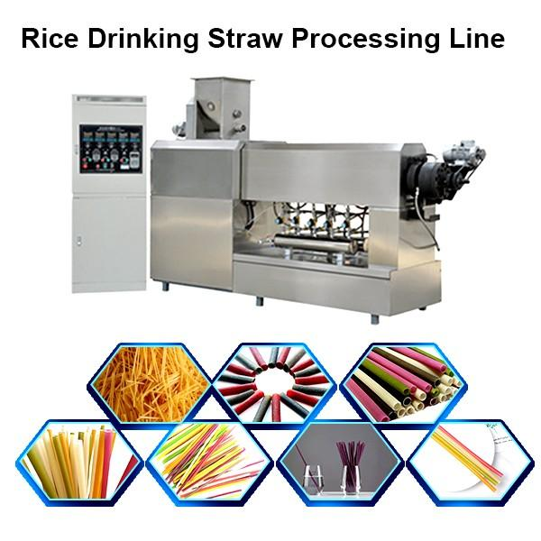 Automatic Disposable Biodegradable Ecological Plastic-Free Rice Cassava Pasta Drinking Straw Plant Processing Line Equipment #1 image