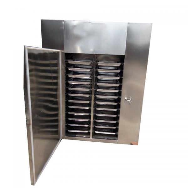 304 Stainless Steel Fish/Meat/Beef Jerky Drying Processing Machine/Heat Pump Dehydrator 2018 #1 image