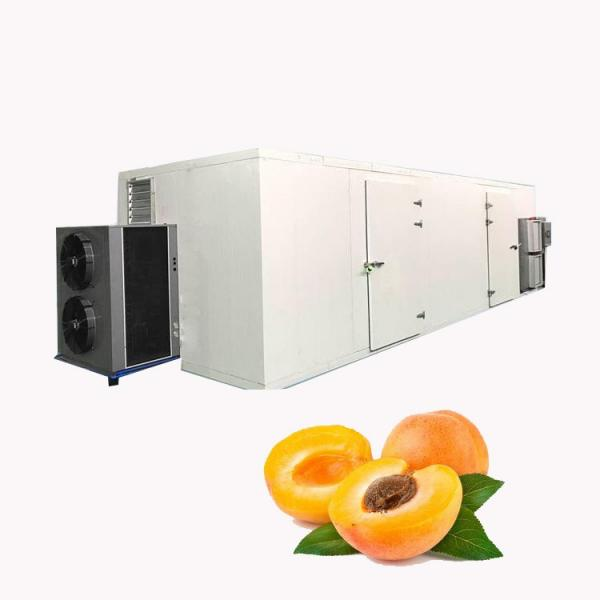 Food Dehydrator/Fruit Drying Machine/Dehydrated Meat Processing Machinery #1 image