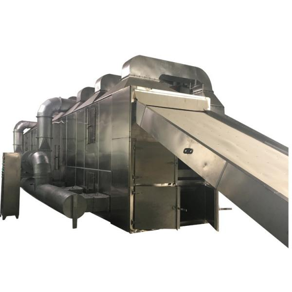 Multilayer Food and Vegetable Continous Conveyor Belt Dryer #1 image