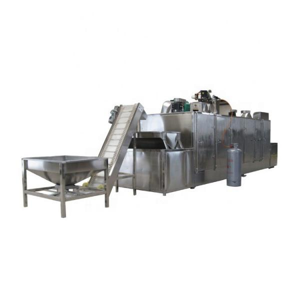 Large Industrial Stainless Steel Continuous Microwave Food Belt Conveyor Dryer #1 image