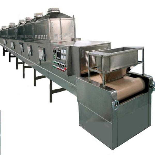 Large Industrial Stainless Steel Continuous Microwave Food Belt Conveyor Dryer #3 image