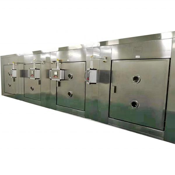 Multi Function Industrial Tunnel Sterilizing Machine Microwave Dryer #3 image