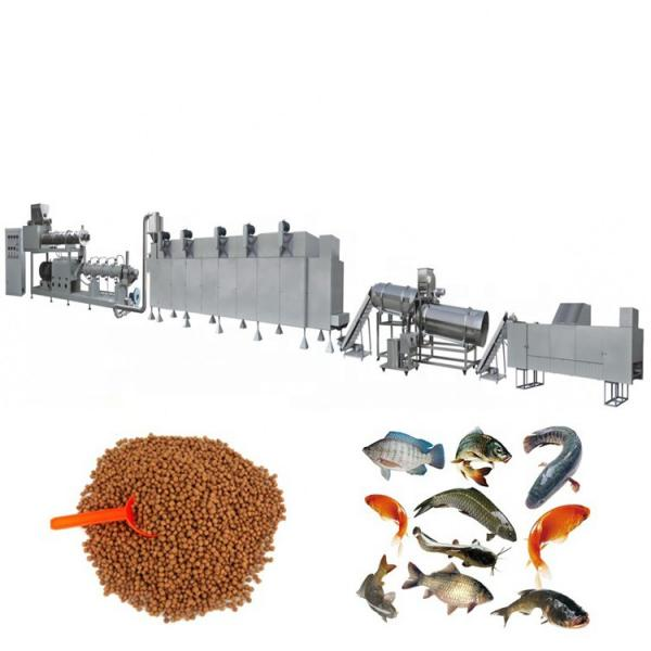China Manufacturer Pet Food Fish Feed Processing Line #2 image